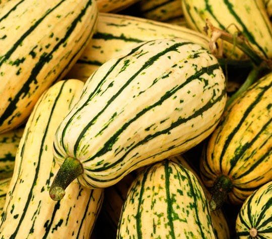 Roasted Delicata Squash With Parmesan And Thyme