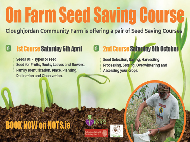 On Farm Seed Saving Course – 5th October 2019