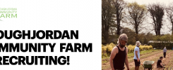 Cloughjordan Community Farm horticulture team leader